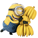 despicable-me-2-Minion-icon-3